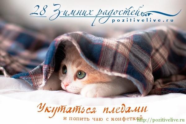 28 зимних радостей. День 19.